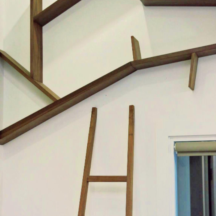 Tree tops book shelves with ladder in walnut